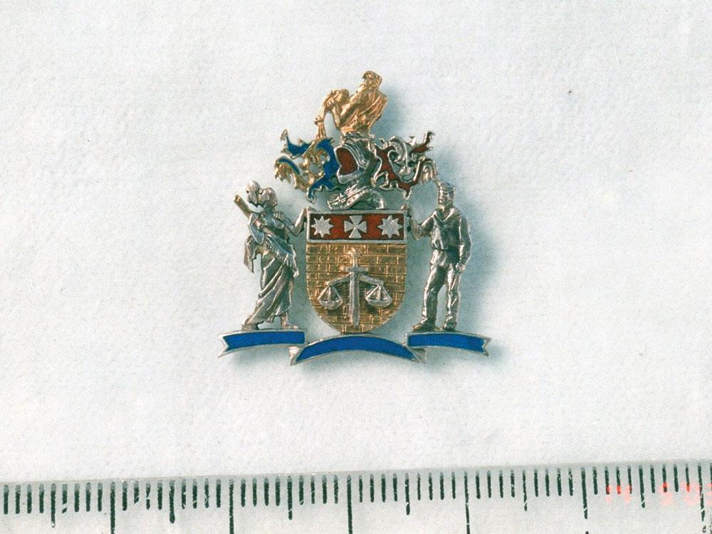latskannyj-znachek-1